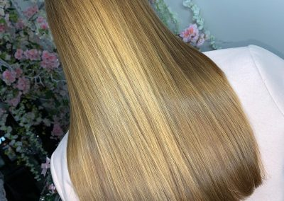 Erica Lewis Hair Extensions16