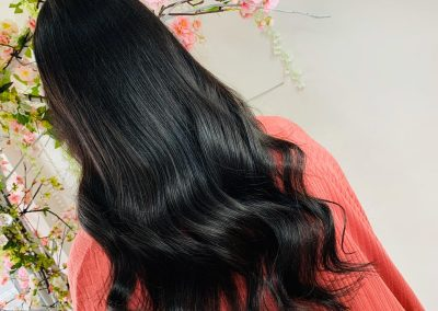 Erica Lewis Hair Extensions18
