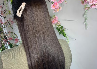 Erica Lewis Hair Extensions26